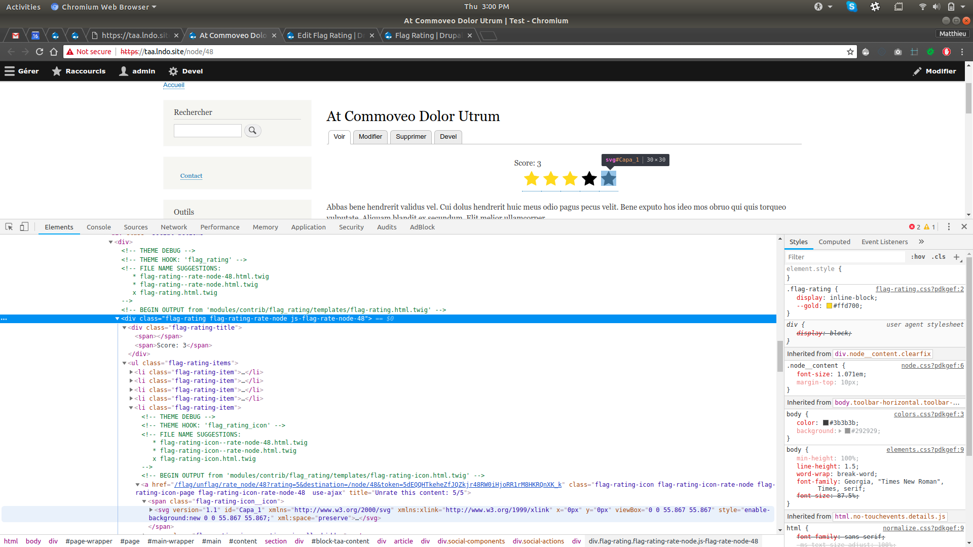 Screenshot of the Flag Rating component on front end with source code.
